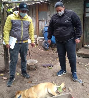 Vereadora recebe denúncias de envenenamento de animais domésticos